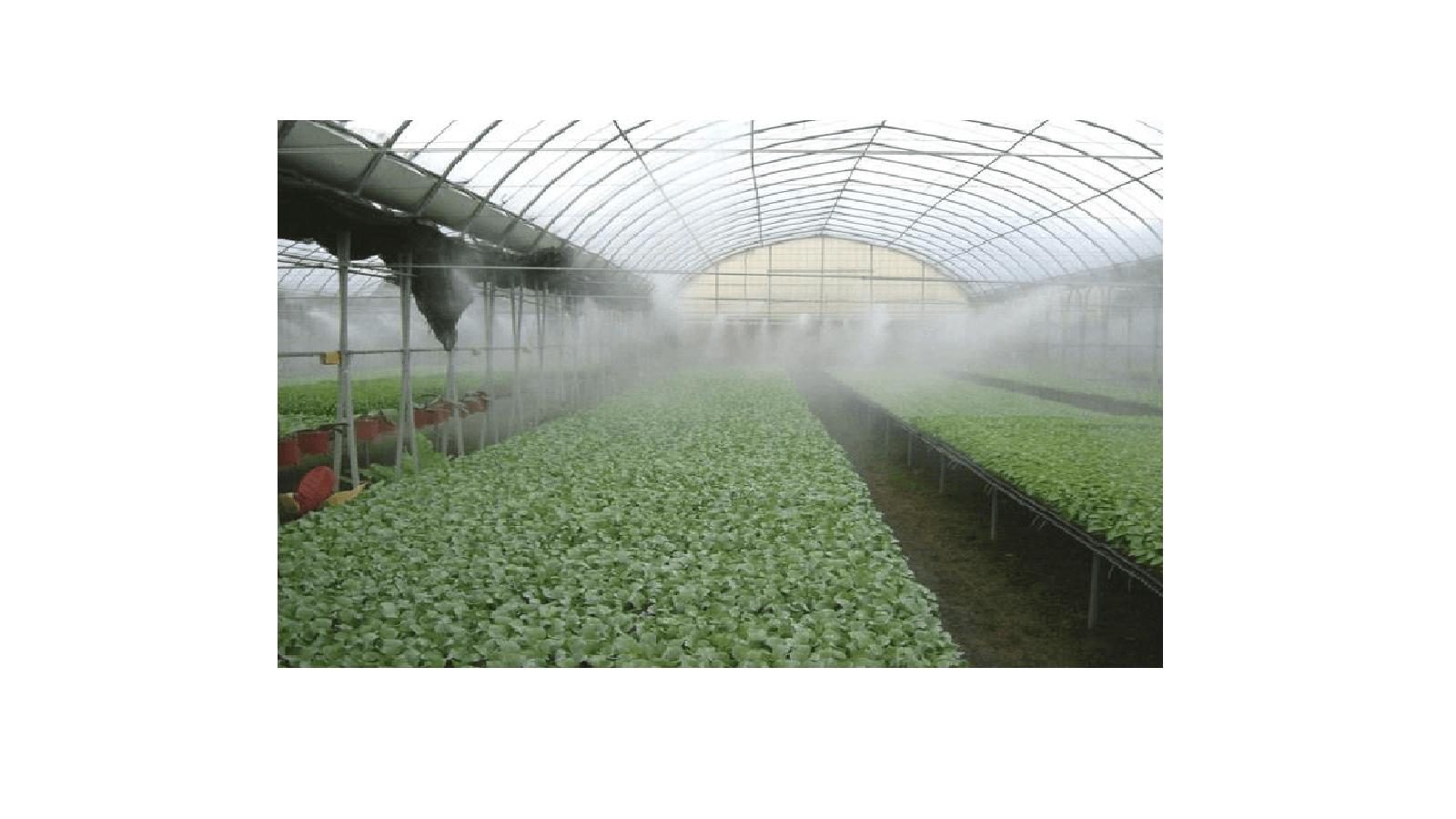 پمپ مه پاش مناسب مرغداری و گلخانه ها